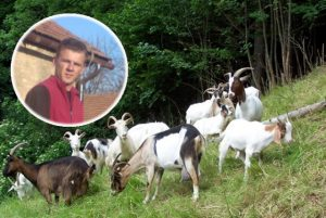 koze koza uzgoj veterinar