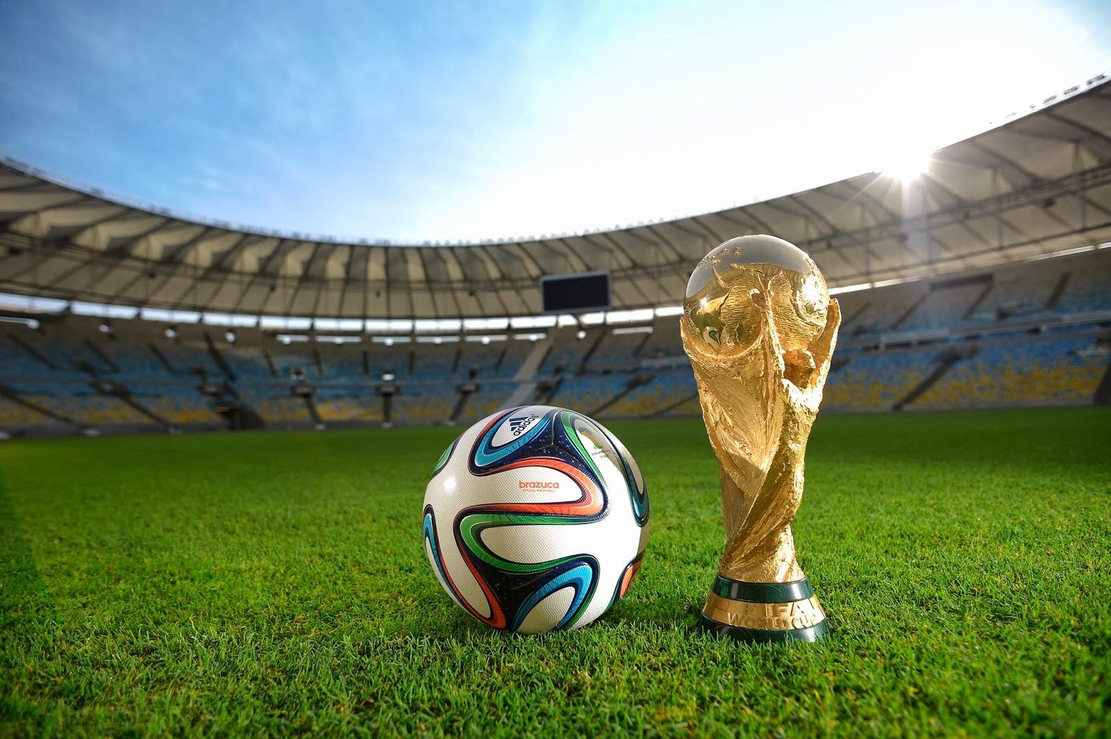 fifa-world-cup-brazil-2014-51