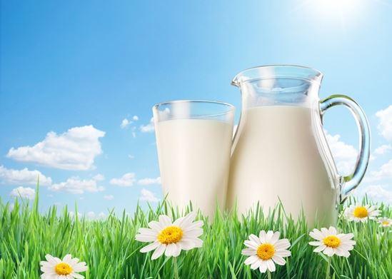 mlijeko slika