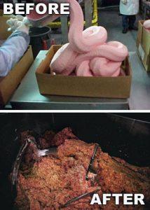 meso mesne prerađevine ljudsko tkivo