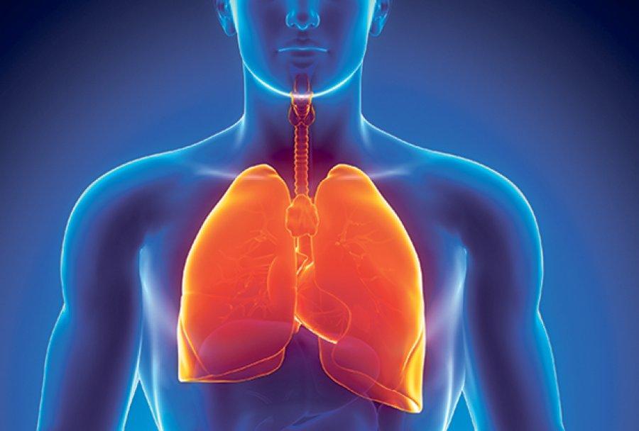 KAKO-OCISTITI-PLUCA-od-nikotina