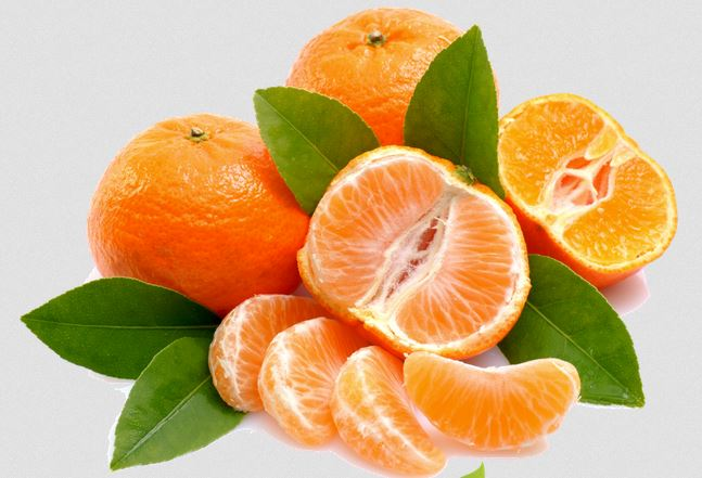 mandarine 567