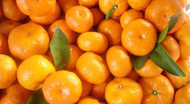mandarinegj