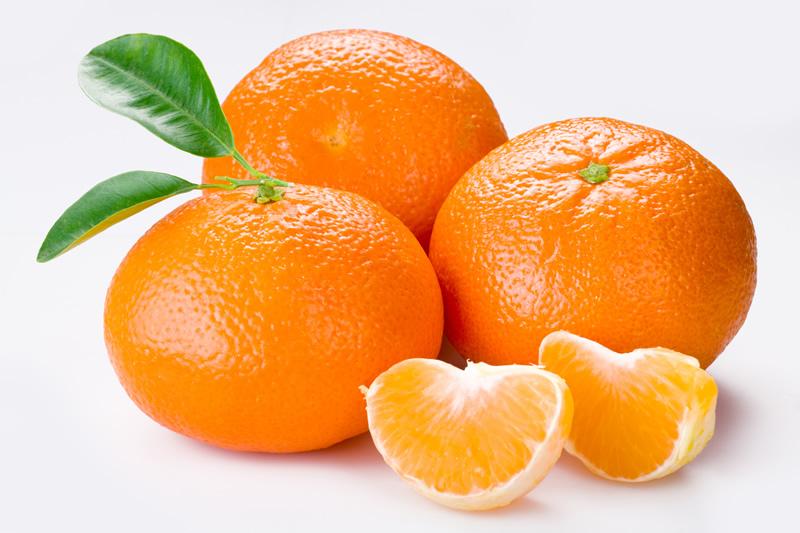 mandarine 41324