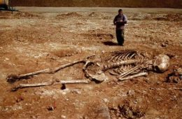 teorija evolucija divovi kosturi