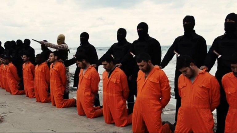 islamska država egipat