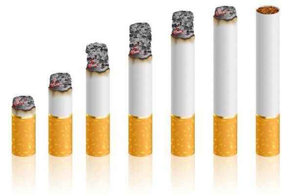 cijena cigareta gorivo trošarine