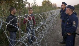 mađarska zid ograda