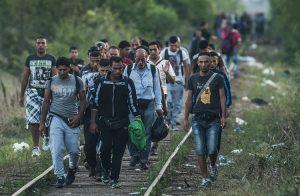 sirijski imigranti u hrvatskoj