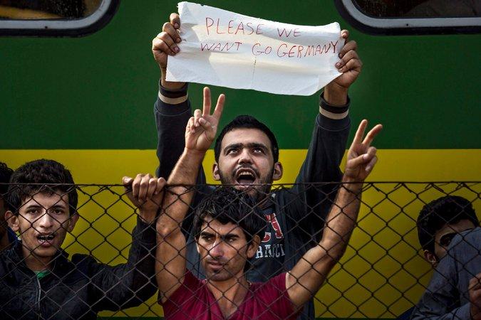 njemačka imigranti silovanje