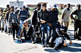 imigranti vojvodina srbija napad