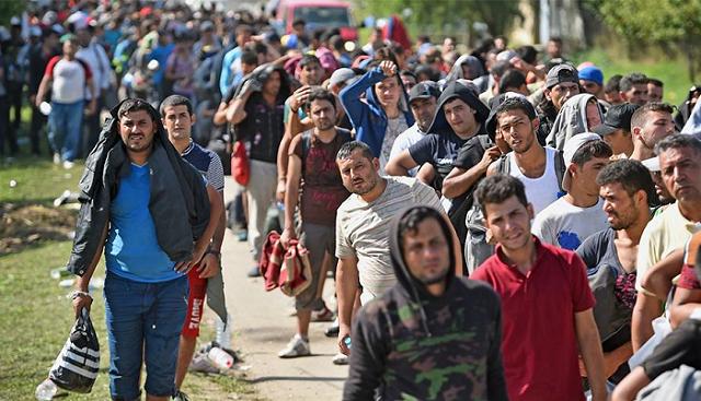 imigranti, zamjena stanovništva, generacija obnove, frano čirko, plenković, kvota, njemačka