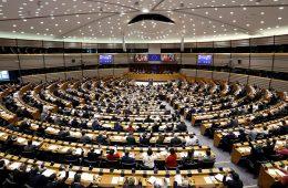 istanbulska konvencija, rodna ideologija, hdz, europski parlament, frano čirko, u ime obitelji